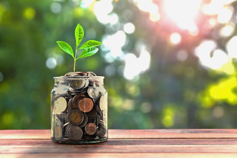 Money Jar with Plant